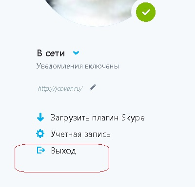 skype_for_web_vihod