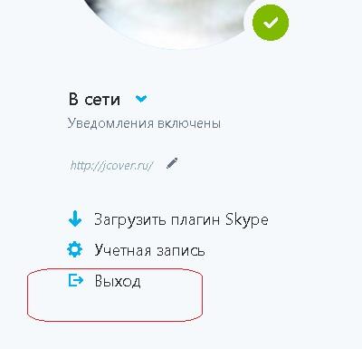 skype_for_web_vihod